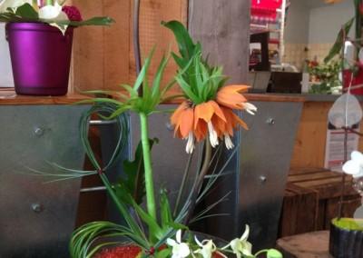 Compos Bouquets17 arums et des lys grau du roi
